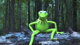 Kermit the Frog Takes...