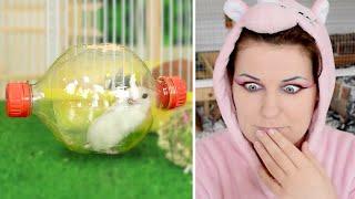Reacting To Troom Troom's 13 DIY Hamster Hacks by ErinsAnimals