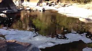 Walpole Australia  city images : The Frankland River at Circular Pool, Walpole Western Australia.