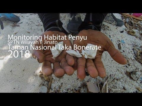 Vlog : Kegiatan Monitoring Habitat Penyu SPTN 2, 2018 Taman Nasional Taka Bonerate