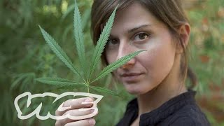 Watch the first episode of SMOKEABLES: How to Make a Gravity Bong - http://bit.ly/28XSWBi The world is divided on marijuana legalization. Numerous studies ha...