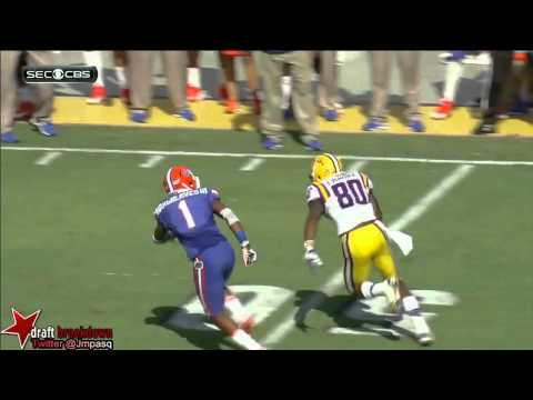 Zach Mettenberger vs Florida 2013 video.
