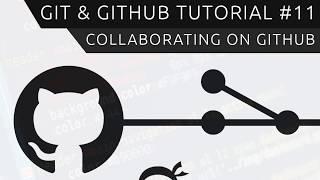 Git & GitHub Tutorial for Beginners #11 - Collaborating on GitHub