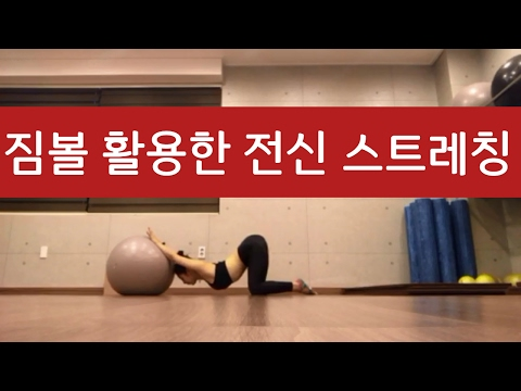 짐볼 활용한 전신 스트레칭 운동법