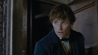 Fantastic Beasts And Where To Find Them   Imax Fan Event Featurette  Hd