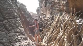 Mali Travels