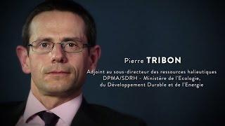 PIERRE TRIBON, DPMA/SDRH
