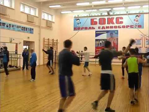 Еще два мастера спорта России по боксу - DomaVideo.Ru