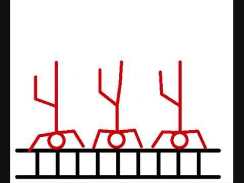 sticks: the beginning