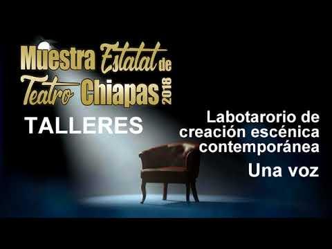 Muestra Estatal de Teatro Chiapas 2018, Talleres