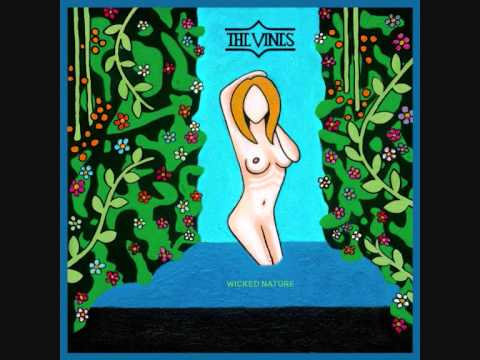 The Vines - Into The Fire