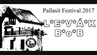 Video Levák Bob, Pallasit Festival, 9 6 2017