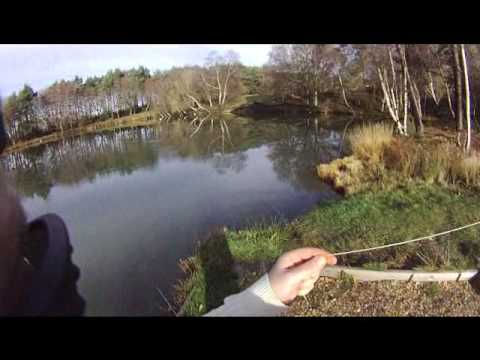 Trout Fishing At Whitesheet Lakes - Hampshire