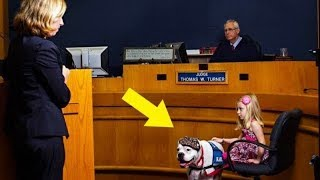 Girl Testifying In Court Gets Crucial Help From Deaf Dog by Did You Know Animals?