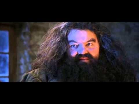 VAGÍNY - Pozor, pozor do domu Dursleyových přichází prostitutka Hagrid :DDD.