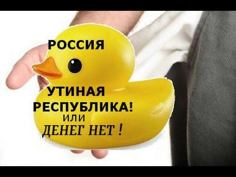 РОССИЯ -утиная республика