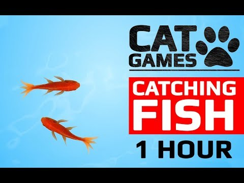 CAT GAMES - р CATCHING FISH 1 HOUR VERSION VIDEOS FOR CATS TO WATCH