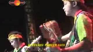 Si Belang Voc.Eny Sagita (Scorpio Dangdut Reggae)