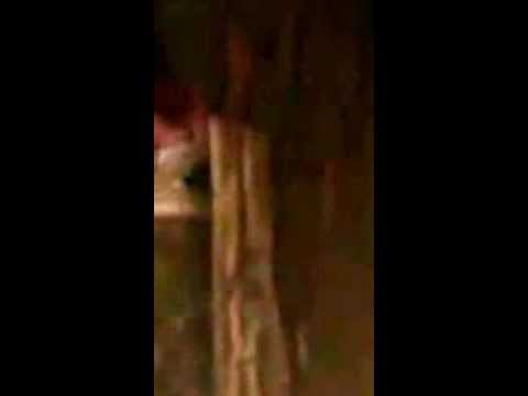 Thiếu nữ vừa leo cây vừa quẩy