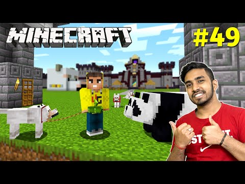 FINALLY PANDA AND DOGS IN MY CASTLE | MINECRAFT GAMEPLAY #49