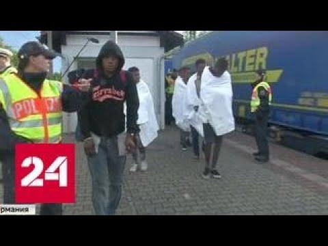 Европа устала: зверские нападения мигрантов на местных жителей участились - DomaVideo.Ru