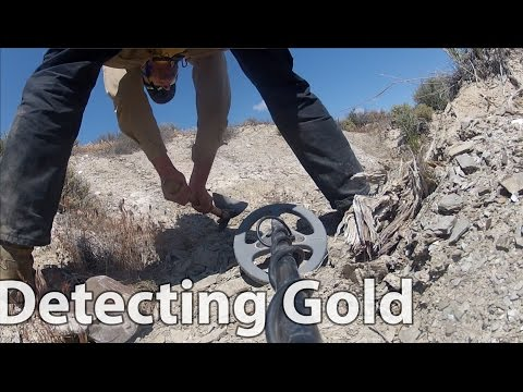 Finding Gold Nuggets in Nevada Metal Detecting