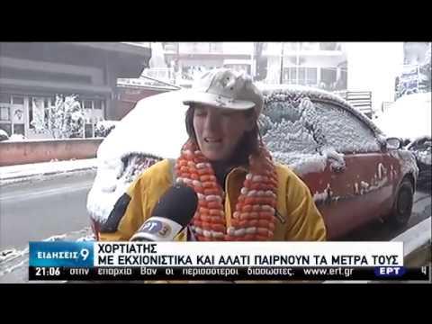 Χιόνα και τσουχτερό κρύο μέχρι την Παρασκευή   05/02/2020   ΕΡΤ