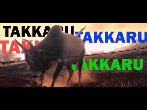 Hiphop Tamizha (takkaru Takkaru)song Official Video