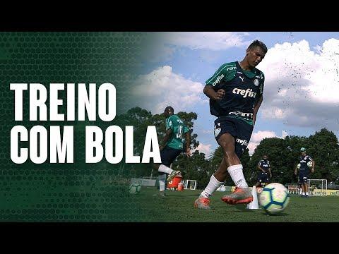 Copertino inicia trabalho com bola no Palmeiras