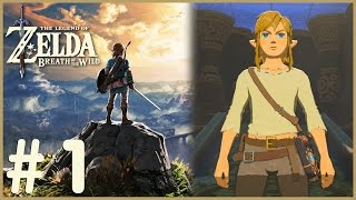 Zelda: Breath Of The Wild - Wake Up Link (1)