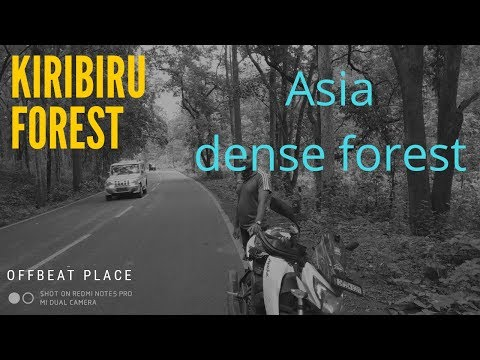 Video KIRIBIRU HILL||ASIA'S DENSEST FOREST||BADA JAMDA download in MP3, 3GP, MP4, WEBM, AVI, FLV January 2017