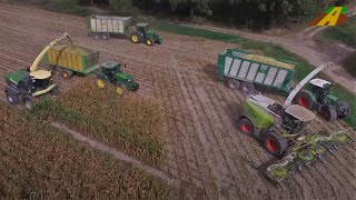 Video KRONE BIG X 1180 stärkster Feldhäcksler der Welt Maishäckseln worlds biggest maize harvester largest MP3, 3GP, MP4, WEBM, AVI, FLV Desember 2018