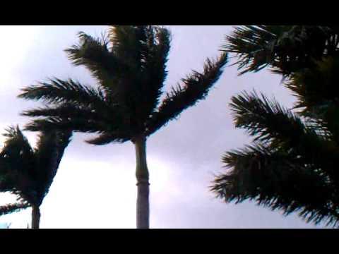 El frío se apoderó de varias ciudades de Florida