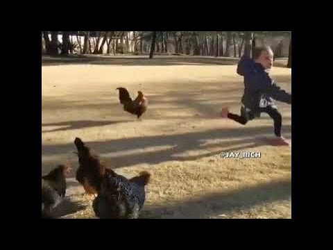 Funny memes - Why are you running/ funny meme/funny video