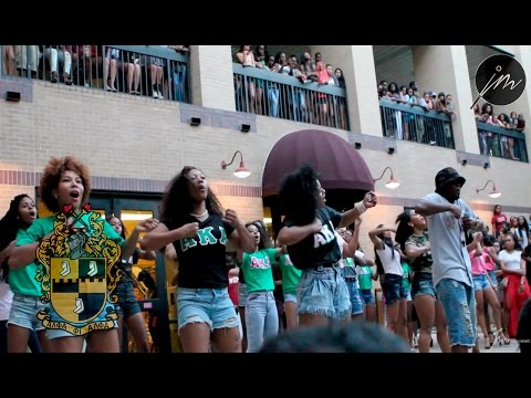 The 2014 Texas State Yard Show: Alpha Phi Alpha Fraternity Inc.