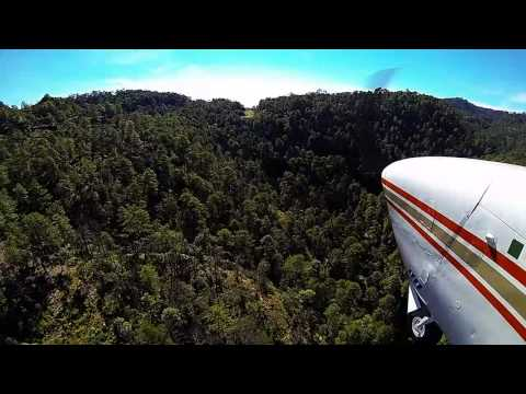 Посадка самолета картеля
