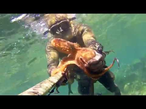 pesca - sub I COLORI DI MAGGIO видео