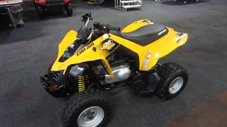 10. 2015 Can-Am DS 250 UA408