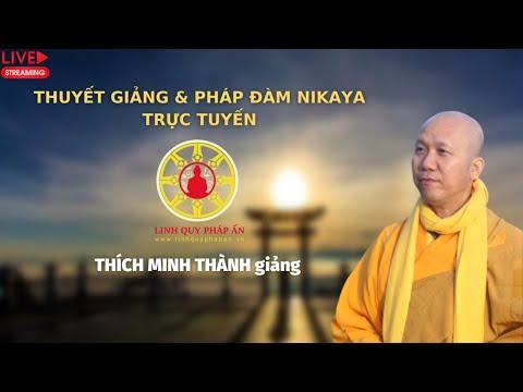 Tinh Hoa NIKAYA - Nghệ Thuật Sống An Vui 4 | Thích Minh Thành