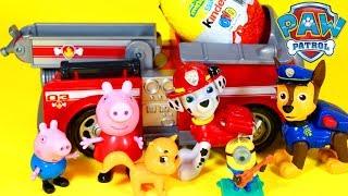 Hoje, a Peppa Pig e o Pig George (Jorge) conhecerão o herói Marshall da Patrulha Canina (Patrulha Pata or Paw Pat) com seu caminhão de bombeiro! E ele trouxe ovo surpresa! Super divertido! Tem tambem os episodios com a Skye e a Everest!Bem vindo ao nosso canal Happy Toys Brinquedos e Surpresas em português do Brasil. Aqui você vai ver abertura de brinquedos, resenha e brincadeiras. Vídeos infantis para crianças de todas as idades.Para não perder nenhum vídeo, inscreva-se: http://www.happytoystv.net  Patrulha Canina  (PAW Patrol) é uma série de animação infantil canadense americana criada por Keith Chapman. Foi estreada nos Estados Unidos no dia 12 de agosto de 2013 na Nick Jr. e no Canadá foi estreada em 2 de setembro de 2013 na TVOKids.Patrulha Canina é um desenho animado, onde Ryder lidera 6 cachorros heróicos: Ryder, Rubble, Zuma, Marshall, Everest e Rocky.Patrulha Canina é um desenho da Nickelodeon sobre 6 cachorrinhos Ryder, Marshall, Rubble, Chase, Rocky, Zuma e a Skye e um menino Ryder.Patrulha Canina também chamado de Paw Patrol, La Pat' Patrouille, Psi Patrol, Patrulla de Cachorros, Squadra Zampa, Щенячий патруль, A mancs őrjárat, Patrulla de los Carachos, Patrulla de la Pata, 爪子巡逻, chân tuần tra, patte patrouille, 足のパト, ロール, tass patrull, Pfote Patrouille, pata de patrulha, лапа патруль, patróil lapa, klou patrollie, dorëshkrim patrullë, labă de patrulare, шапа патрола, La squadra dei cuccioli. Peppa é uma porquinha linda e amorosa tem 5 anos de idade e adora se divertir com seus pais, Papai Pig e Mamãe Pig , e seu irmãozinho George.Ela adora brincar de se fantasiar e passa o dia saltando entre poças de lama ao redor de sua casa. Suas aventuras sempre terminam com muitas gargalhadas!George Pig - irmão de 3 anos de Peppa, que adora brincar com sua irmã mais velha. Seu brinquedo favorito é um dinossauro, que ele leva para toda parte. Costuma chorar quando se assusta ou quando perde o seu amigo dinossauro.PATRULHA CANINA e PEPPA PIG em PORTUGUES BRINQUEDOS DO
