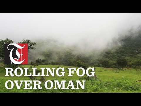 Watch as the rolling fog comes over the crest of a hill.