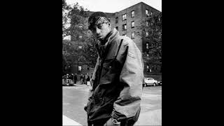 FREE Old Skool Boom Bap Nas Type Beat | Never Settle - (Prod. Manuel)