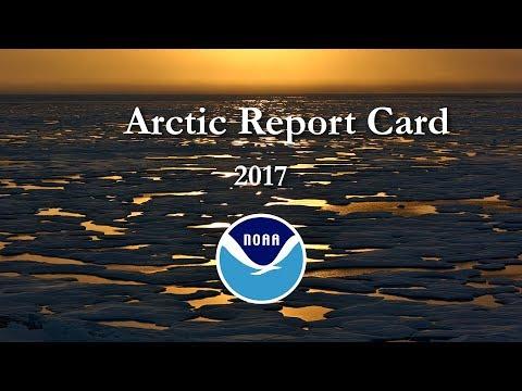 地球冰箱沒關 北極暖化成新常態[影]