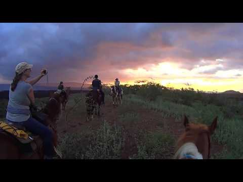 Makena Stables - Maui - Sunset Horseback Trail Ride - Old Haleakal Lava Flows