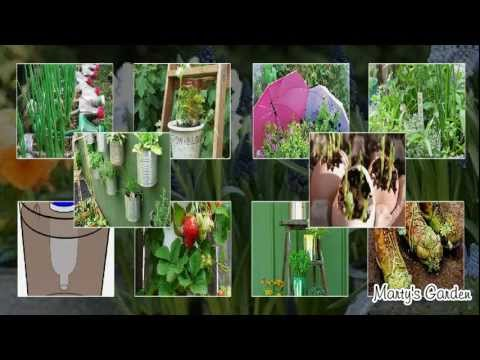 Recycled Container Gardening Ideas
