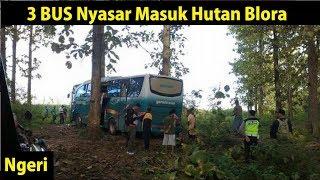 Download Video 3 BUS Nyasar Masuk Hutan Blora Jawa Tengah MP3 3GP MP4
