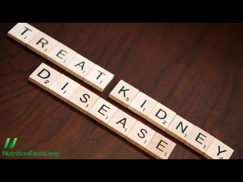 How to Treat Chronic Kidney Disease With Diet?