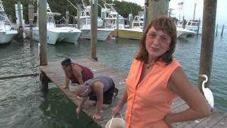 Marathon (FL) United States  city photo : Explore the Keys Episode 6 with Chris Emmons for Marathon Florida TV,