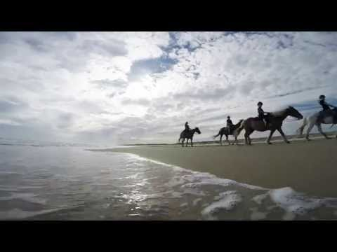 Outer Banks Beach Horseback Riding
