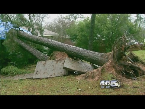 Storms Damage Homes and Businesses in Jackson, Alabama
